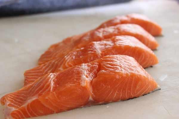 Harga daging ikan salmon fillet