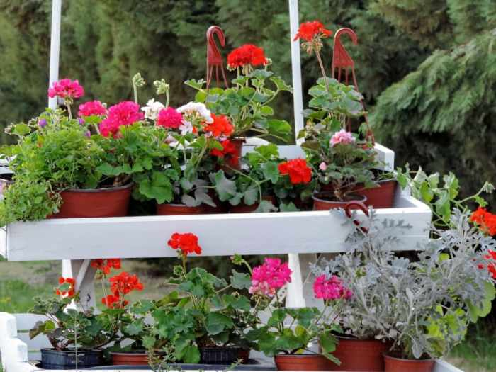 Cara membuat pot bunga dari barang bekas
