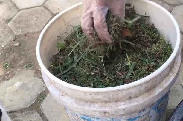 Pupuk kompos